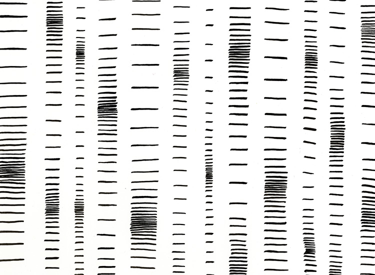 brush lines gradient